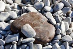 Llarge bruine steen onder het overzees van kiezelstenen Royalty-vrije Stock Afbeelding