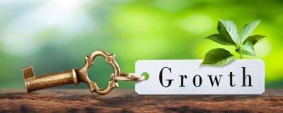 Llave al crecimiento imágenes de archivo libres de regalías