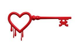 Llave de Heartbleed Imagen de archivo libre de regalías