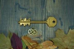 Llave de oro del vintage al lado de los engranajes y de las hojas de otoño fotografía de archivo