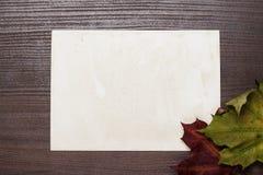 Lle certi foglie di autunno e vecchio fondo della foto del blanck Fotografia Stock Libera da Diritti
