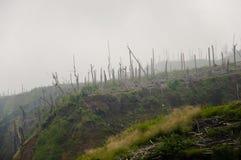 Lle conseguenze del monte Merapi 2010 Volcano Eruption - l'Indonesia fotografia stock