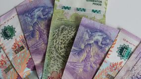 Lle note di valuta dell'Argentina di cinque e cento pesi, fine su archivi video