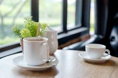 Lle tazze bianche di caffè caldo e di piccolo vaso dell'albero sulla tavola di legno fotografia stock libera da diritti