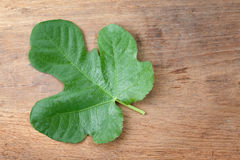 Lleaf fig on a wooden table Royalty Free Stock Photos