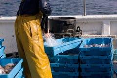 Llegada de pescados en el acceso Imagen de archivo