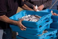 Llegada de pescados en el acceso Imagenes de archivo