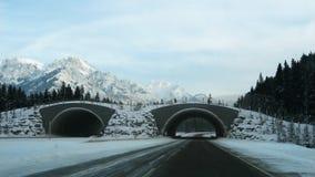 Llegada en las montañas Foto de archivo
