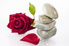 Llene las rocas y el rojo se levantó Imágenes de archivo libres de regalías