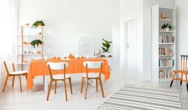 Lleno de comedor ligero con las paredes blancas piso y muebles Estante con la porción de libros y de planta en la esquina imagen de archivo libre de regalías
