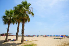 Llevant Beach, in Salou, Spain. SALOU, SPAIN - AUGUST 3, 2017: People relaxing under some palm trees in the Llevant Beach, far from the crowd in the seashore Stock Photos