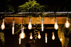 Llight电灯泡-图象 库存图片