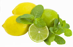 Llimes  and Mint. Green limes, lemon  and branch of mint ruits the isolated Stock Image