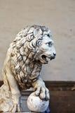 Llion near Palazzo Vecchio Stock Image