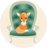 Llitle fox sitting on a chair Royalty Free Stock Photos