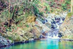 Llittle瀑布在Minoo公园,大阪,日本 免版税库存照片