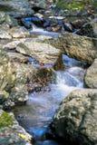 Llittle瀑布在Minoo公园,大阪,日本 库存照片