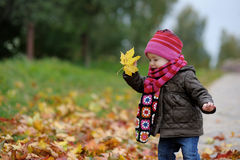 Llittle baby in an autumn park Stock Image