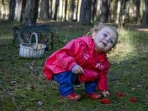 Llittle dziewczyna podnosi up jagody w jesień lesie Zdjęcia Royalty Free