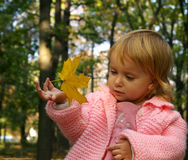 Llittle girl and autumnal leaf Stock Photography