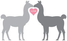 llove llama Стоковое Фото