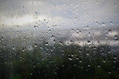 Llovió Foto de archivo libre de regalías