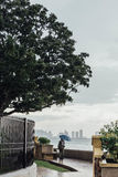 Lloviendo en el parque que cerca de la costa con un hombre que lleva a cabo el paraguas y ver paisaje marino y el paisaje urbano  Fotografía de archivo libre de regalías