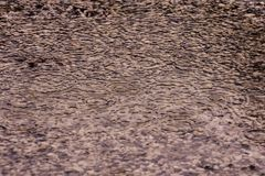 Lloviendo flujo abajo en el piso Foto de archivo