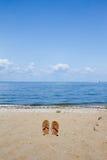 Lloyd Neck Beach Arkivfoton