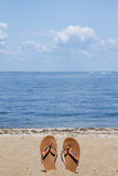 Lloyd Neck Beach Arkivfoto