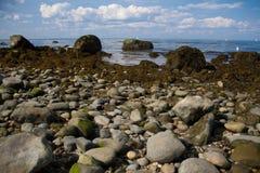 Lloyd Neck Beach Royaltyfri Foto