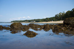 Lloyd Neck Beach Arkivbild