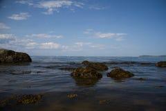 Lloyd Neck Beach Fotografering för Bildbyråer