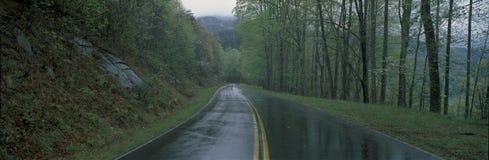 Llueva el camino remojado, ruta verde de la colina, VA fotos de archivo