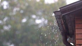 Llueva en un tejado del roofThe en la lluvia almacen de metraje de vídeo