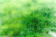 Llueva los descensos en los vidrios de la ventana emergen con el fondo o el te verde Imágenes de archivo libres de regalías