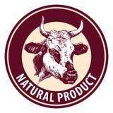 Эскиз llustration вектора коровы нарисованный рукой Шаблон дизайна логотипа Стоковое фото RF
