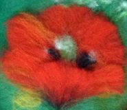 Flower wool red. Llustration for background made in technique wool watercolor. Red poppy on green field. Made with layers of natural wool. Dry wool felting Stock Image