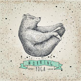 Llustration of bear isolated onvintage background Stock Image