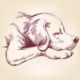 Llustration disegnato a mano di vettore del cane Immagini Stock Libere da Diritti