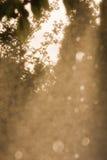 Lluvia Fotografía de archivo