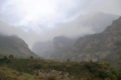Lluvia alpina Imágenes de archivo libres de regalías