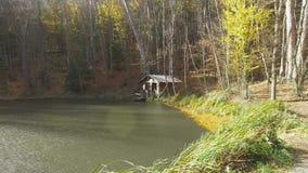 Lluvia con el sol sobre el lago del bosque metrajes