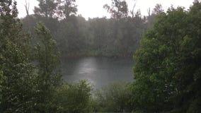 Lluvia de colada en el río de Willamette almacen de video