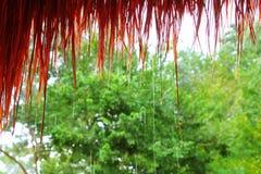 Lluvia de la choza de la selva en la caída del agua de la selva tropical Imagen de archivo libre de regalías