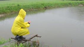 Lluvia de los pescados de la alimentación de la mujer metrajes