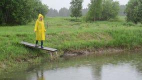 Lluvia de los pescados de la alimentación del granjero metrajes