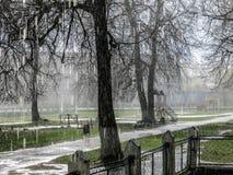 Lluvia de primavera Foto de archivo libre de regalías