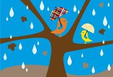 Lluvia del otoño Foto de archivo libre de regalías