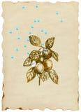 Lluvia del verano stock de ilustración